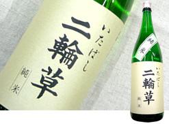 板橋地酒 「純米清酒 二輪草」